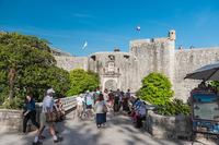 Хорватия: королевская гавань в Дубровнике