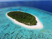 Красота подводного царства: домашний риф в новом отеле-курорте Faarufushi Maldives