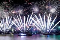 Праздничная фотогалерея: как отпраздновали Новый год в разных уголках мира