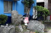 Япония: Храм пенисов в Кавасаки