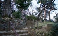 Парк Сумида: загорелись фонари - скоро запоют цикады.