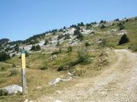 Трекинговая дорожка в Альпийских горах.