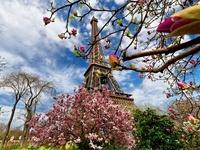 Майская Франция