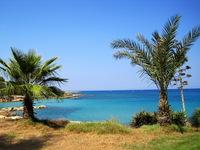 Яркие краски Кипра
