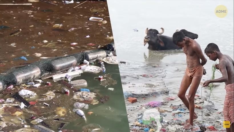 Видео: Захватывающая история мужчины из Индии, который спасает умирающие озера