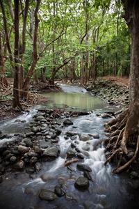 Рай на Земле существует. И находится он на Маврикии…