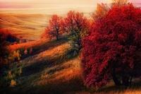 22 места на Земле, которые были созданы для осени
