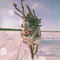 Лапландия — родина Санта-Клауса, какой вы ее еще не видели