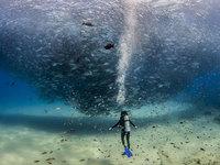 20 cамых шедевральных снимков National Geographic, которые взорвали интернет