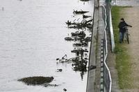 В Париже осушили канал Сен-Мартен