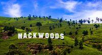 Чайные плантации Mackwoods. <span class='relinker'>Нувара Элия</span>. Шри-Ланка