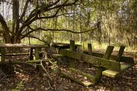 Заброшенный Дисней-парк: 20 редких снимков