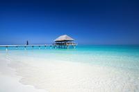 Гастрономические удовольствия в Velassaru Maldives