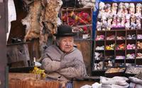Боливия Многонациональное Государство Боливия. ryinok vedm