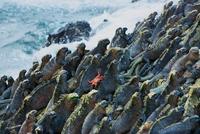 16 восхитительных снимков фотосообщества 500px о том, как прекрасен этот мир