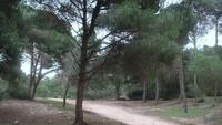 отдых в монастире тунис