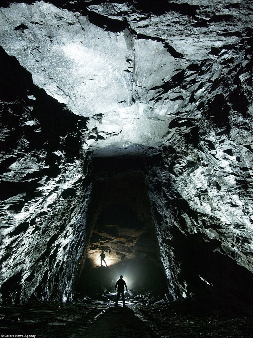фото картинки из-под земли слову, майами