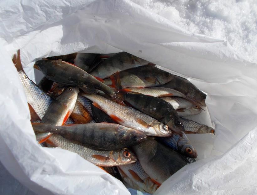 Зимняя рыбалка на челябинском озере