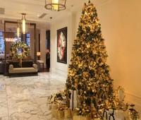 Сказочный новый год в Waldorf Astoria Amsterdam