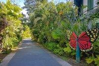 Ботанический сад — Чалонг