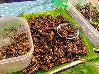 Съедобные насекомые на Пхукете, октябрь 2017