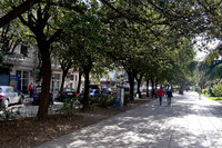Прогулочная улица в Ялте