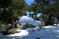 Вид на Ялту с вершины горы Крестовая (Ореанда)