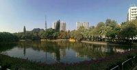 В парке Юэсю