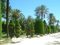 Park Genoves в мае