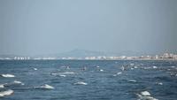 Редкие отважные купальщики на пляже Адриатического моря Эмилия-Романья