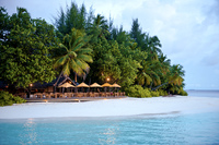 Angsana Ihuru — уютный дайвинг-отель на крохотном острове посреди Индийского океана