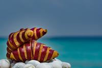 Сладкая жизнь в Kuramathi Maldives