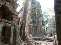Руины храма среди деревьев — Та Прум