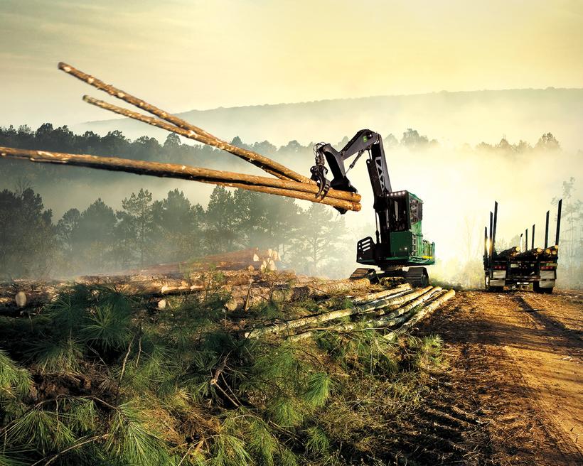 Дню матери, прикольные картинки про лесную промышленность