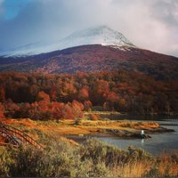 Осенняя листва в Патагонии