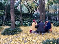 Шанхай в октябре