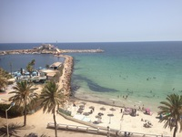 дельфин монастир тунис отзывы 2019