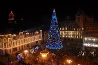 Новогодняя елка в Батуми