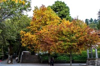 Осенняя Испания