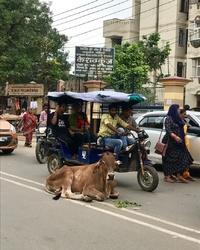 улицы ГОА, Индия