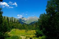 Леса на склонах гор