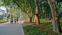 Стамбул: прогулка по парку