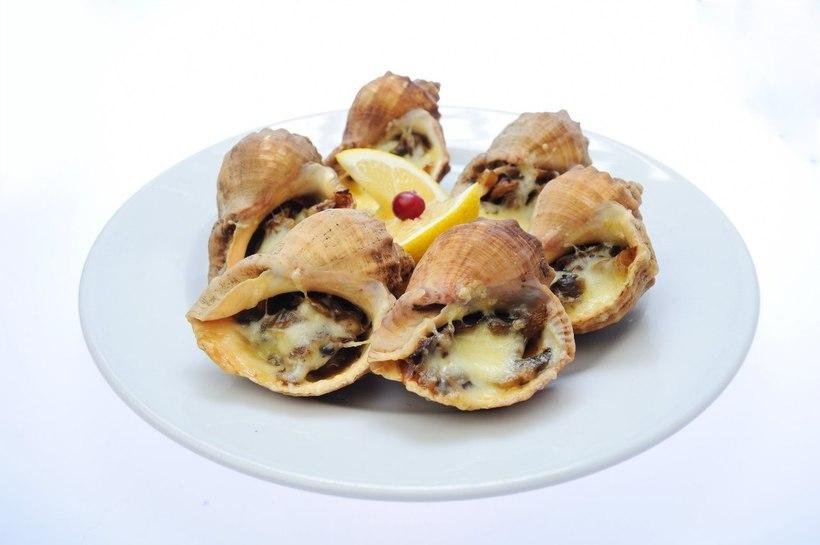 триколору добавили блюда из рапанов рецепты с фото каталоге можете