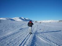 Гейло в ноябре (Норвегия)
