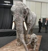 В Южной Африке женщина делает кондитерские скульптуры в натуральную величину