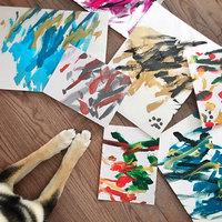 Собака из Канады стала художником-абстракционистом и зарабатывает деньги