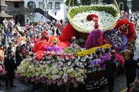 Подвижная инсталляция на празднике цветов. Афины. Май.