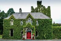 Зеленый - национальный цвет Ирландии