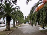 Прогулка по набережной в Старой Гагре