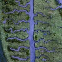 Абстрактные аэрофотографии водоемов, подчеркивающие хрупкую красоту Земли